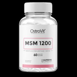 MSM 1200